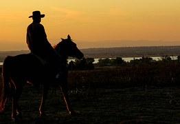 cowboy-283449__180