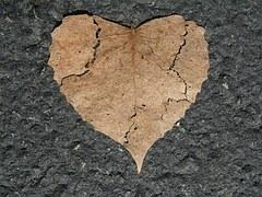 heart-742712__180.jpg